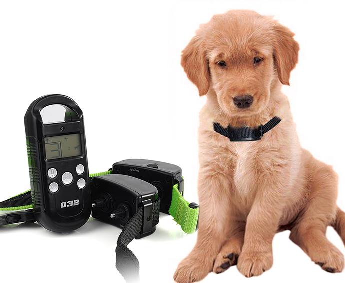 Decathlon reclama tests a sus proveedores de collares para for Collares para perros