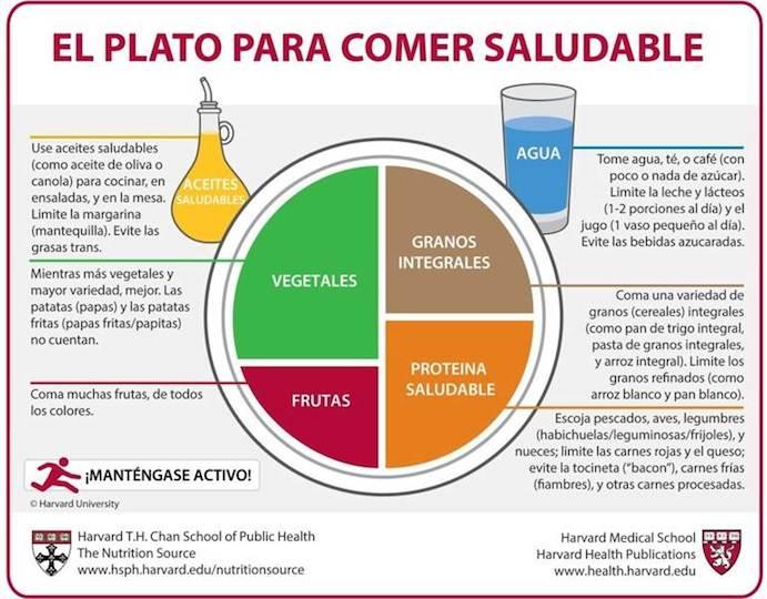Así es el Plato para Comer Saludable recomendado por Harvard