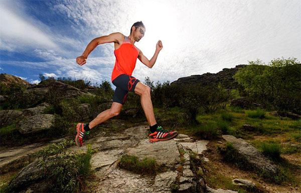 Las claves para afrontar un ultra trail, según Luís Alberto Hernando
