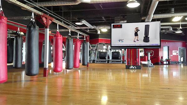 Telegim TV lanza una línea de videoclases de Boxing
