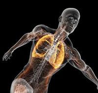 Ejercicios Para Aumentar Tu Capacidad Pulmonar Cmd Sport
