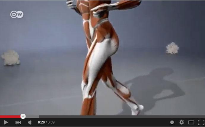 Los efectos del running en el cuerpo