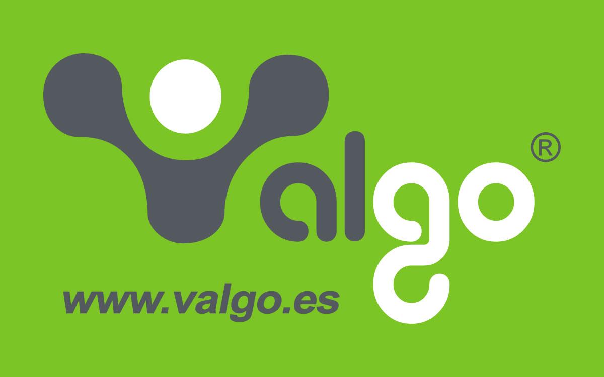 logo_valgo13