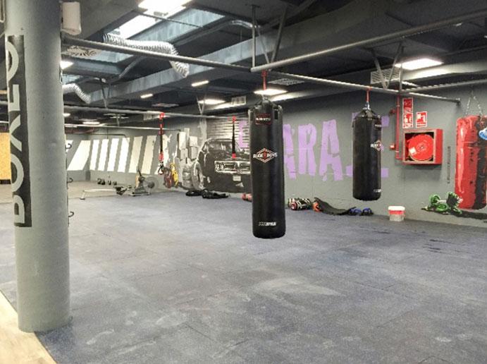 altafit-boxing