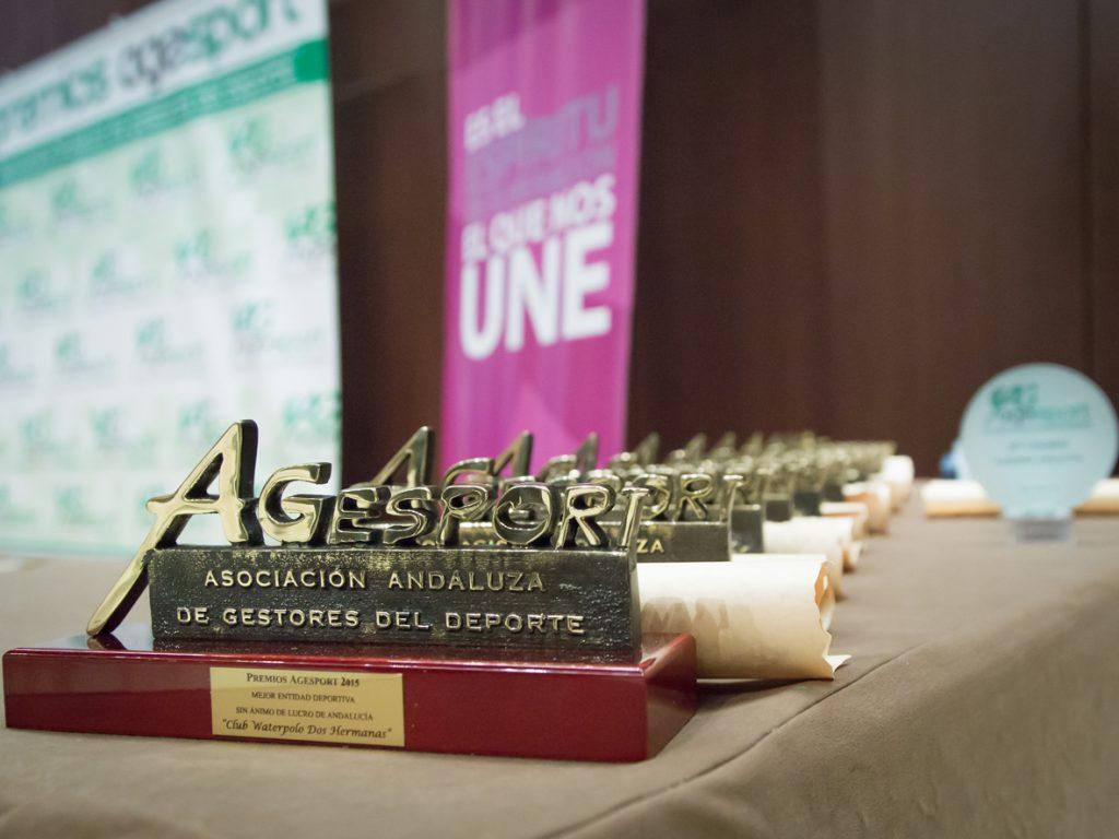 Agesport otorga los premios a la excelencia en la gestión deportiva 2016
