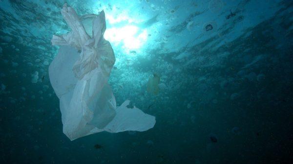 Un proyecto de Ternua retira 63 toneladas de basura de los mares ingleses