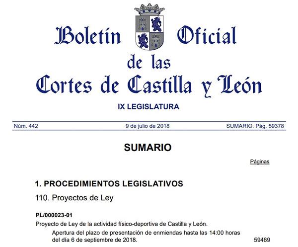 Castilla y León avanza en la actualización de su Ley del Deporte