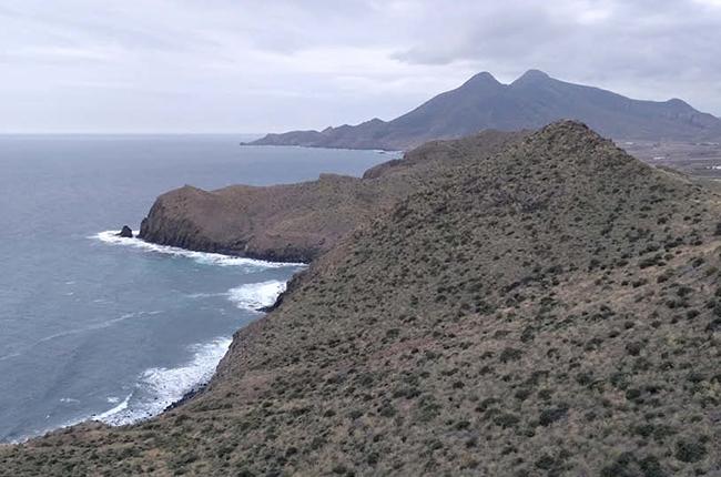 Ternua apoya un proyecto de reforestación del ecosistema de Cabo de Gata
