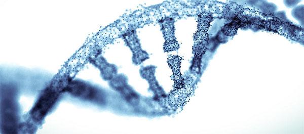 Las pruebas de ADN llegan a los gimnasios
