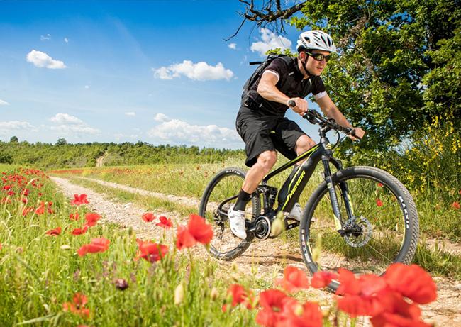 El Parlamento Europeo desestima la imposición de un seguro obligatorio para las e-bikes
