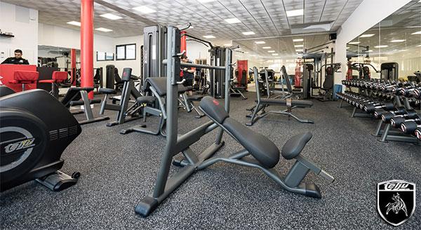 """Telju Fitness se reivindica ante """"las mentiras"""" del sector del equipamiento de fitness"""