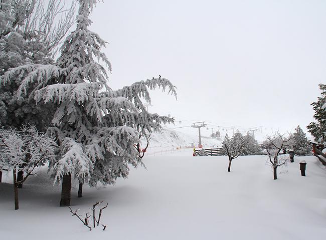 Sierra Nevada registra 50cm de nieve nueva