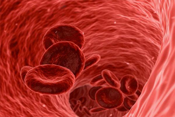 ¿Qué tener en cuenta en un análisis de sangre de un corredor?