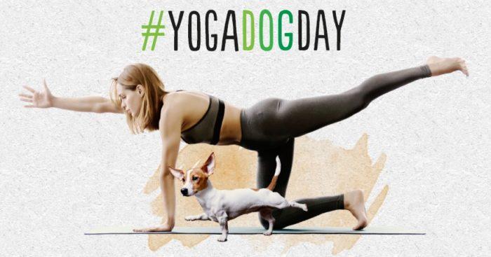 Vuelve el Yoga Dog Day a Madrid