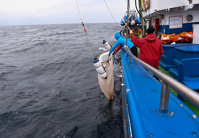 Ternua sale a pescar plástico en 'La Costera del Plastifish'