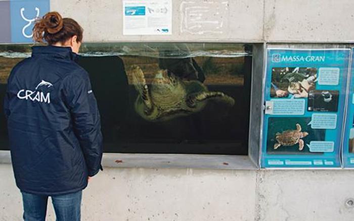 Klean Kanteen se alía con la Fundación Cram para proteger la biodiversidad marina