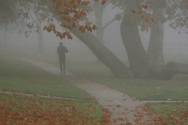 Diario de confinamiento (XXII): Pese a la niebla ya se intuyen siluetas