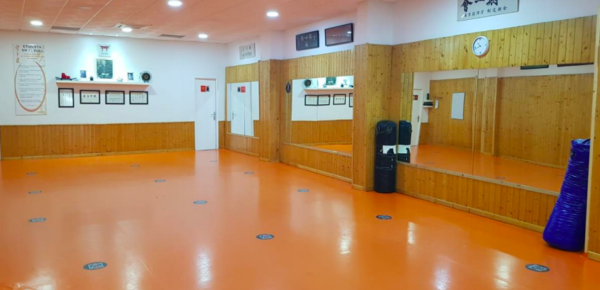Las escuelas de artes marciales de Andalucían reclaman menos restricciones a la Junta
