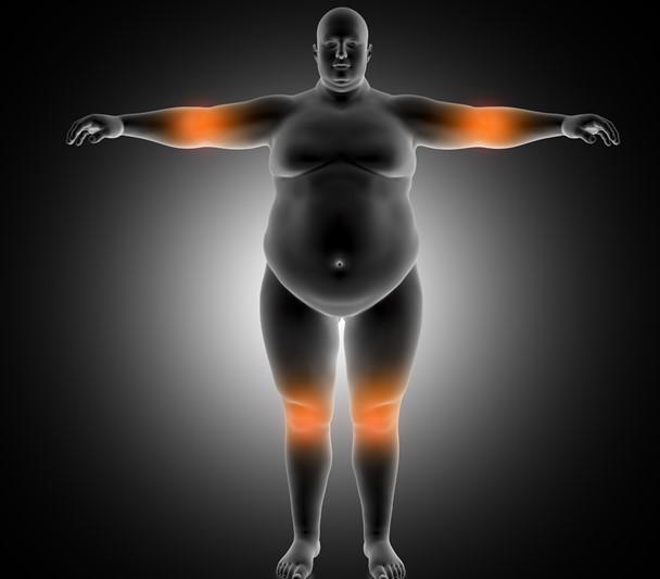 Nuevas recomendaciones sobre el entrenamiento físico y el sobrepeso